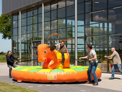 Inflatable Bouncer IB-1
